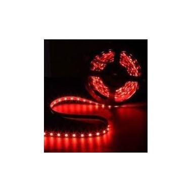 STRIPS RED LED-3528 12V
